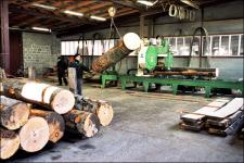 Wood saw-cut for parquet workpieces (Edelweiss, Ukraine)
